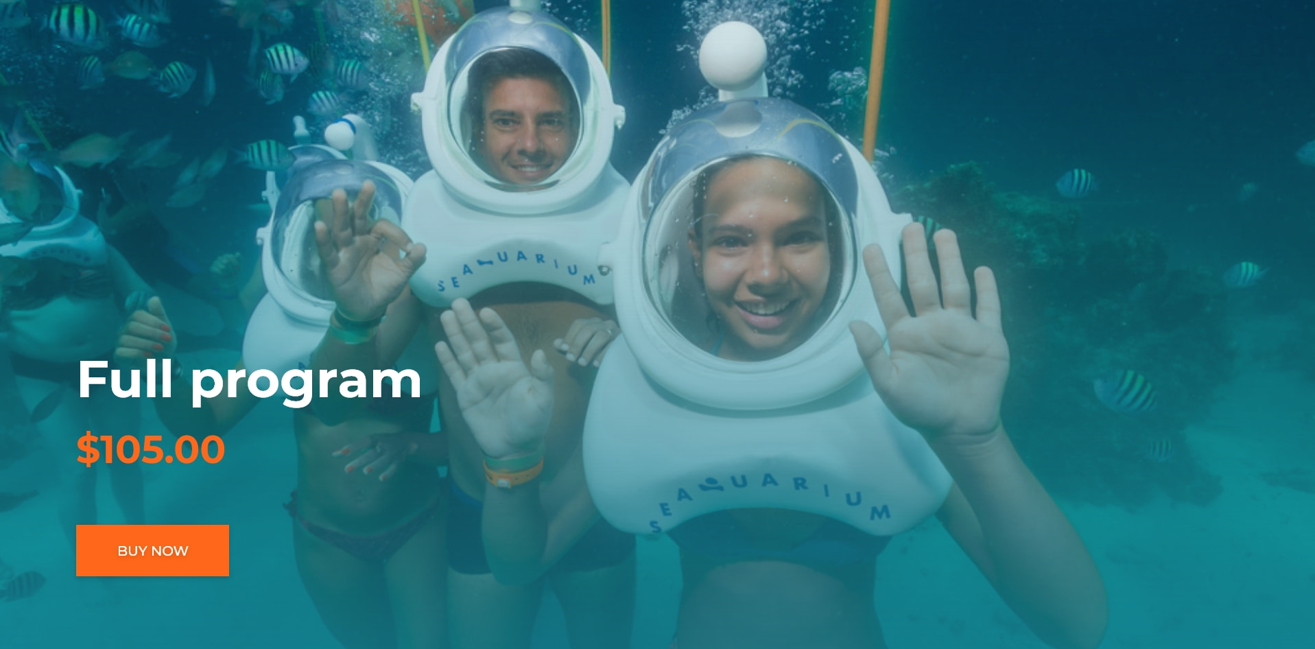 Live The Most Exciting Submarine Experience In Seaquarium