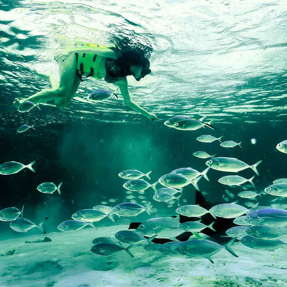 Snorkel In Punta Cana Tours