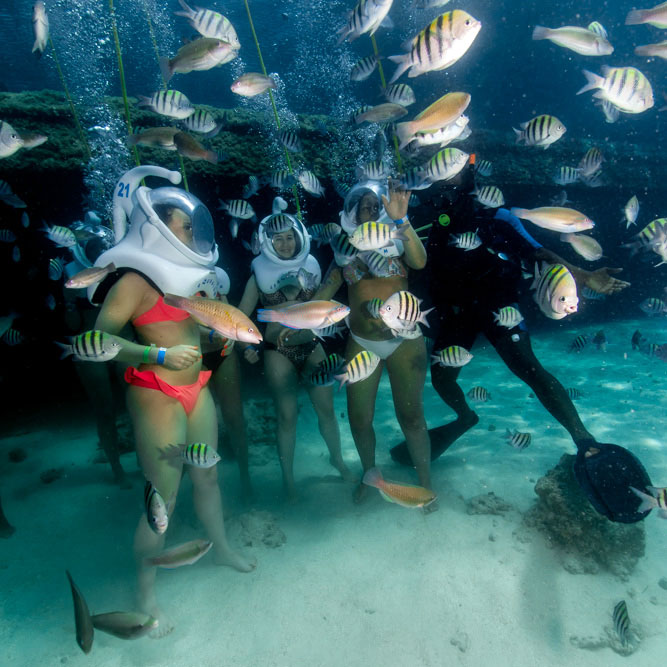 Tour Under Water Walk In Punta Cana
